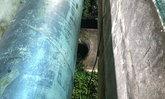 พบศพสาวท่อนล่างเปลือย ถูกฆ่าปาดคอยัดท่อ ย่านสุขุมวิท 77