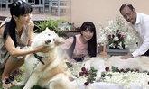 ตั๊ก มยุรา ทำพิธีอำลาทั้งรอยยิ้ม สุนัขตัวโปรดสิ้นลมหายใจ