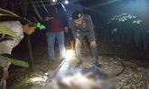 พ่อแค้นลูกสาว 6 ขวบถูกทำอนาจาร ตามยิงคนร้ายดับกลางป่าลึก