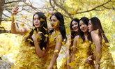 สวยสะดุดตา นักศึกษาสาวจีนสร้างสรรค์ชุดจากใบแปะก๊วย