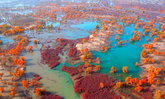 สวยตระการตา เผยภาพทิวทัศน์ฤดูใบไม้เปลี่ยนสีที่เขตซินเจียง