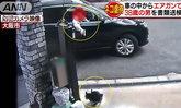 หนุ่มญี่ปุ่นใช้ปืนอัดลมซุ่มยิงแมวจรจัด แค้นเพราะเคยโดนข่วน
