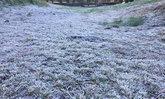 ดอยอินทนนท์หนาวติดลบ 2 องศา เหมยขาบกระจายเต็ม