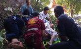 แม่ชีวัย 75 ปี หวังดีปีนตัดต้นไม้ที่บังมณฑป พลัดร่วงตกเขาเจ็บหนัก