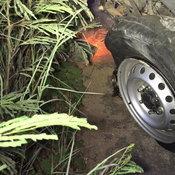 หนักเกิดพิกัด รถขนหมูยางระเบิดพลิกคว่ำ หมูกระเด็นเกลื่อนถนน