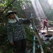 031161 เลย ช้างป่า 5 เชือก บุกทำลายทรัพย์สินราษฎร