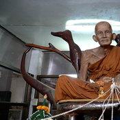 ลูกศิษย์หลวงปู่ศุข ต้นตำหรับวิชาเสกใบมะขามเป็นตัวต่อ ยันเป็นเรื่องจริง