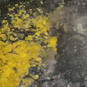น้ำผุดปริศนาโผล่ขึ้นมากลางถนน หน้าศาลเจ้าพ่อขุนด่านธงชัย