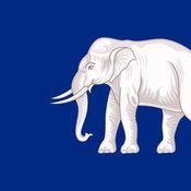 ธงเกตุ