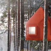 โรงแรมกลางป่า