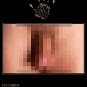 ปฏิทินอวัยวะเพศชาย