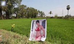 """เกษตรกรอินเดียติดโปสเตอร์ """"ดาวโป๊"""" ป้องกันคนร้ายขโมยพืชผัก"""