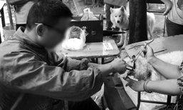 ชาวเน็ตจีนเดือด เจ้าของพาสุนัขตัดเส้นเสียง หมอรับตัดเสร็จใน 5 นาที