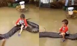 อึ้ง! หนูน้อยเวียดนามวัย 3 ขวบ ขี่งูหลามยักษ์เล่นขณะบ้านน้ำท่วม