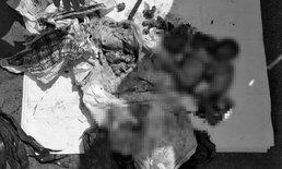 พนักงานเก็บขยะอึ้ง พบทารกยัดถุงดำ 4 ศพ คาดเหยื่อทำแท้งเถื่อน