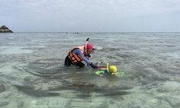 จนท.กุมขมับ ทัวร์จีนเหยียบปะการังจับหอยเม่น-ปลานีโม่เกาะหลีเป๊ะ