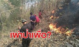 ไร้สำนึก ลอบเผาป่าสองข้างทางทำฝุ่นละอองพิษเพิ่มในอากาศ