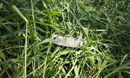 """พบแล้ว มือถือ """"น้องอิน ณัฐนิชา"""" ตกพงหญ้าใกล้จุดเกิดเหตุ"""