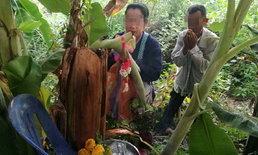 พบต้นกล้วยประหลาด ปลีออกกลางต้น  เซียนหวยแห่ขอเลขเด็ด