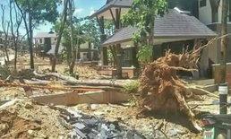 """เผยภาพต้นไม้–เสาไฟล้มใน """"บ้านป่าแหว่ง"""" ชี้ดินเริ่มทรุดหลังฝนตกต่อเนื่อง"""
