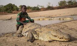 คู่หูสุดซี้ เด็กในกานาใช้ชีวิตใกล้ชิดกับจระเข้ เล่นกันไม่มีท่าทีหวาดกลัว