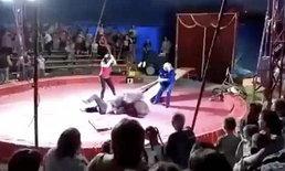 คนดูสยอง หมีคณะละครสัตว์รัสเซียโมโห ขย้ำคนฝึกกลางเวทีแสดง
