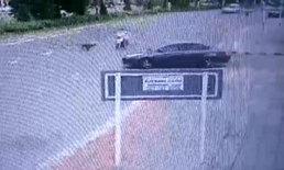 นาทีระทึก สุนัขตัดหน้ารถ จยย. คนขับล้มคว่ำหัวฟาดพื้น ผู้ต้องหาหนีลอยนวล