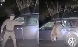 เข้าไปได้ยังไง? เจ้าหน้าที่ต้องทุบกระจกรถ ช่วยชีวิตเจ้าหมี