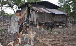 """หมาจรจัด 18 ตัว ไล่กัดไก่ชาวบ้าน """"ลุงใบ้ใจบุญ"""" ถูกแจ้งความให้ชดใช้ 3 หมื่น"""