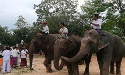 """มหากุศล ช้าง 30 เชือก ร่วมเวียนเทียนกับชาวไทยและต่างชาติ เนื่องในวันสำคัญโลก """"วิสาขบูชา"""""""