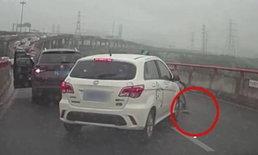 ชาวเน็ตจีนถกเดือด หญิงหยุดรถบนทางด่วน ช่วยชีวิตลูกแมว