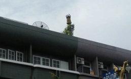 หญิงชาวฝรั่งเศสวัย 61 ปี คลุ้มคลั่งปีนดาดฟ้าชั้น 3 ของเกสต์เฮาส์จะกระโดดตึก!