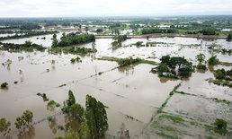 """ชาวนาน้ำตกตกหลังฤทธิ์ """"เซินติญ"""" ทำฝนถล่มน้ำเอ่อทะลักท่วมพื้นที่นาแล้วกว่า 600 ไร่"""