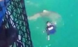 นาทีหวาดเสียว ทหารเรือหวิดโดนงับขา ฉลามตัวร้ายพรางตัวจู่โจม