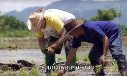 คลิปเล่าเรื่อง!! จิตอาสาไทย&เทศ พลิกผืนนาให้เขียวขจี จากวิกฤตน้ำท่วมถ้ำหลวง