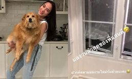 """""""อั้ม พัชราภา"""" บ้านพังอีกแล้ว แสนดี น้องหมาสุดรักงอน รื้อมุ้งลวดกระจุย"""