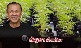 """""""เนวิน"""" ดัน """"กัญชา"""" เสรี ย้ำคนไทยต้องเข้าถึงได้ หวั่นผลประโยชน์ตกกับคนบางกลุ่ม"""