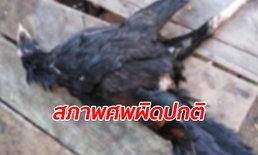 ขวัญผวาเป็ดไก่ตายเกลื่อน 21 ตัว สภาพถูกเจาะตูดควักไส้ ลือหนักไม่ปอบก็กระสือ