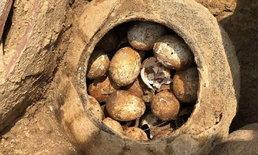 """ตะลึง นักโบราณจีนขุดพบ """"ไข่พันปี"""" ซุกไหสุสานโบราณที่เจียงซู"""