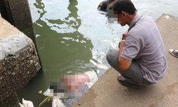 พี่นั่งดูศพน้องชายหายจากบ้าน 2 วัน-ก่อนพบเป็นศพลอยกลางแม่น้ำเจ้าพระยา
