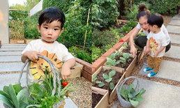 """เปิดสวนหลังบ้านอลังการ 50 ล้านของ """"เนย โชติกา"""" มีพืชผักครบทุกอย่างจริงๆ (มีคลิป)"""