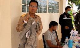 ซุกยาบ้าในท้องช้าง! รวบพ่อค้าหัวใสซ่อนยาบ้ายัดใส่ตุ๊กตา-เตรียมขายวัยรุ่นในพื้นที่