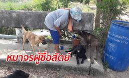 หมาจรจัดฮีโร่ โดดช่วยคุณป้าวัย 68 รอดเงื้อมมือโจร ร้องคำเดียวมาเป็นสิบตัว