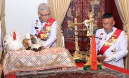 พระราชพิธีบรมราชาภิเษก: เผยชื่อแมววิเชียรมาศที่ใช้ในพระราชพิธีเฉลิมพระราชมณเฑียร