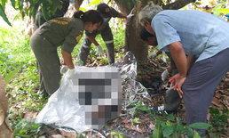 มีเงื่อนงำ พบศพหนุ่มนิรนามฟันหลอ ใช้ปอกล้วยผูกคอตายผิดธรรมชาติ