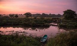 สผ. – UNDP จับมือฟื้นฟูป่าพรุ-พื้นที่ชุ่มน้ำ รับมือภัยโลกร้อน