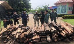หน่วยฯ พญาเสือแกะรอยขบวนการตัดไม้พะยูง มูลค่าความเสียหายกว่าครึ่งล้านบาท!