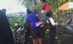 อุทาหรณ์ ชายวัย 61 ปี ถูกรถไถนาเดินตามดันร่างลอยติดกับต้นไม้เสียชีวิต