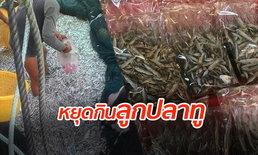วิกฤตปลาทูไทย!  ชาวเน็ตวอน หยุดซื้อ-ขาย-ไม่จับ ลูกปลาทูตากแห้ง