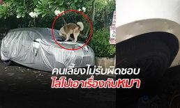 สุดเซ็ง! สาวแชร์คลิปสุนัขเพื่อนบ้านกัดเก๋งเสียหาย แต่คนเลี้ยงไม่รับผิดชอบ โบ้ยให้ฟ้องเอง